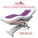 Medical Bed TBGM20