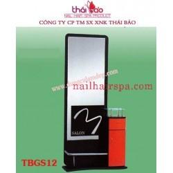 Mirror TBGS12