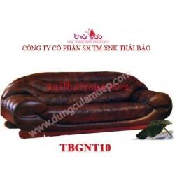 Bàn Nội Thất TBGNT10