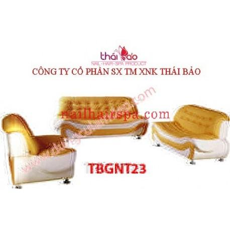 Ghế Nội Thất TBGNT23