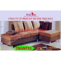 Bàn Nội Thất TBGNT55
