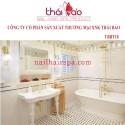 Bồn tắm cao cấp TBBT18