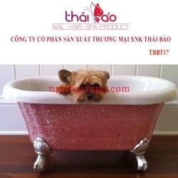Bồn tắm cao cấp TBBT17