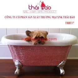 Bathtub TBBT17