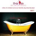 Bồn tắm cao cấp TBBT15