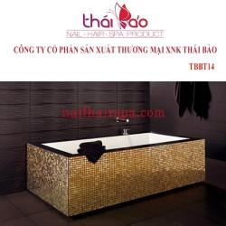 Bồn tắm cao cấp TBBT14