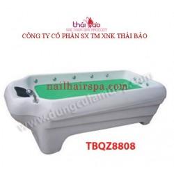 Bathtub TBQZ8808