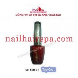 Gel Top Coat ( Bước 3 )