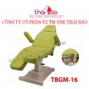 Giường y khoa TBGM16