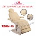 Giường y khoa TBGM19