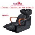 Ghế gội đầu TBGHG01