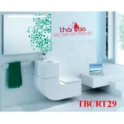 Sinks rửa tay TBCRT29